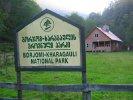 Tour in Borjomi national reserve